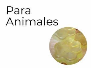 Para animales